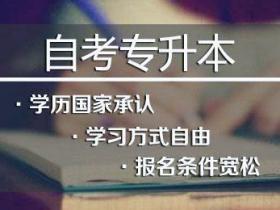 西安交通大学网络教育学院远程教育高起专学生毕业实习及案例分析报告写作要求及评分的规定